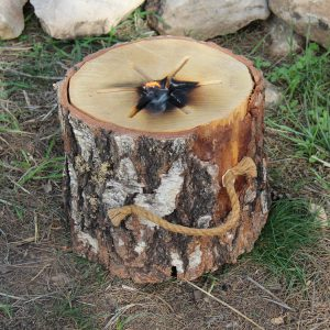 בול עץ ההופך למדורה